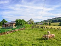 casa de turismo rural en A Fonsagrada